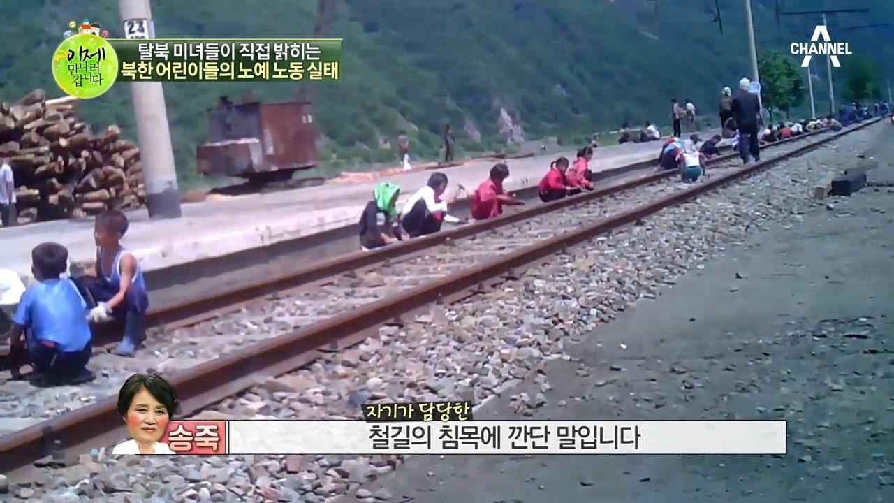 아이들의 강제노동·노예노동이 당연시되는 사회... 북한 이미지
