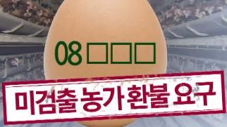 '08'번 계란은 수난 이미지