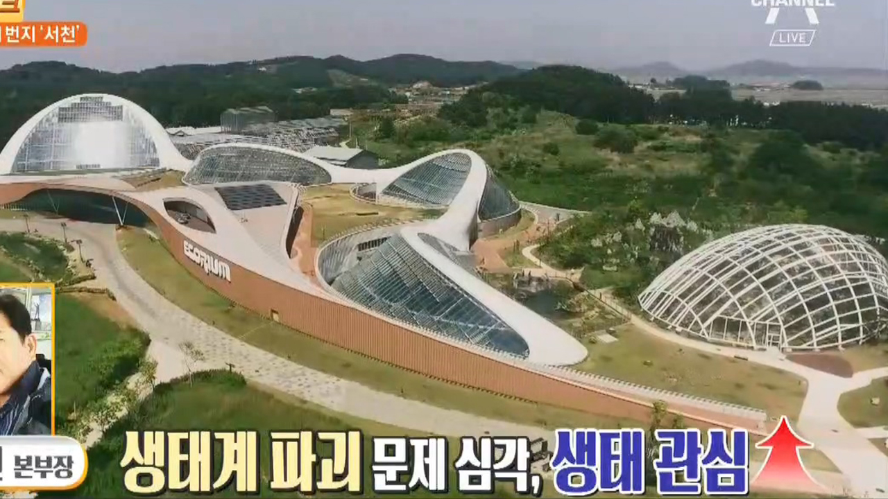 대한민국 생태 1번지 서천에서 즐기는 전시관 여행 이미지