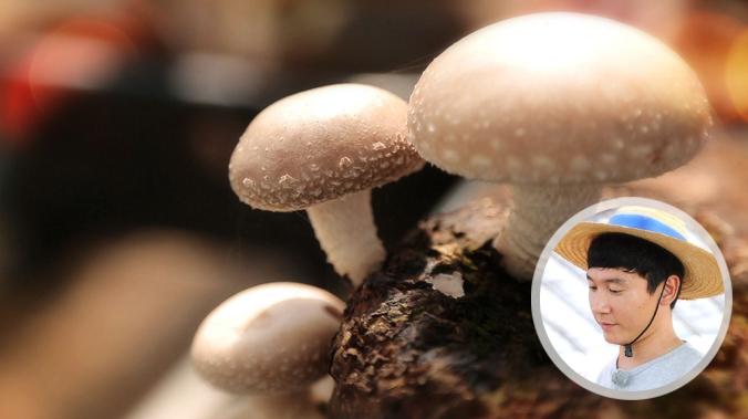 """[12회/표고버섯] """"좋은 사람들과 즐기고 싶은 좋은 표고버섯"""" 이준근 농부 이미지"""