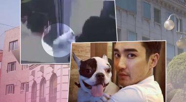 """""""개 주인 용서하지만…처벌규정 강화돼야"""" 이미지"""