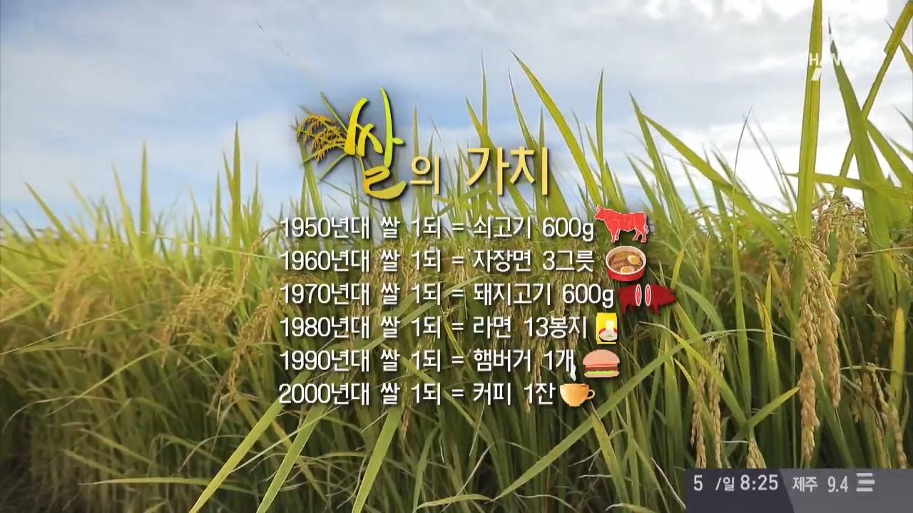 한국인,쌀맛에 빠지다 1회 이미지