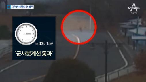 JSA 귀순 영상 공개 이미지