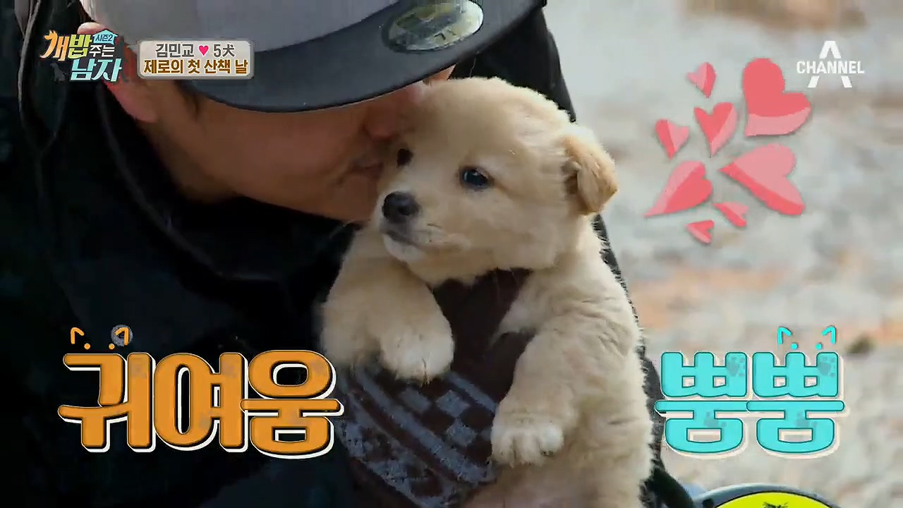 (심멎♡) 제로의 첫 산책 방해꾼! 동네犬 아기 댕댕이의 폭풍애교♡ 간식주떼염'ㅅ' 이미지