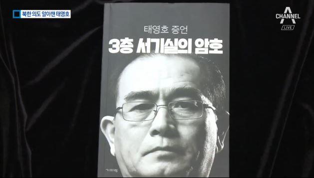 김정은 꿰뚫어 본 태영호 이미지