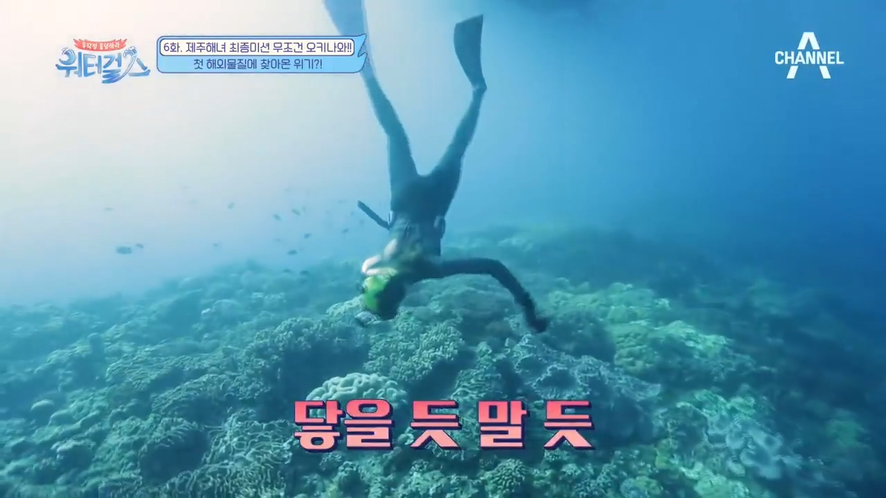 위기의 최여진, 깊은 오키나와 바닷속을 거침없이 들어가보는데..! 이미지
