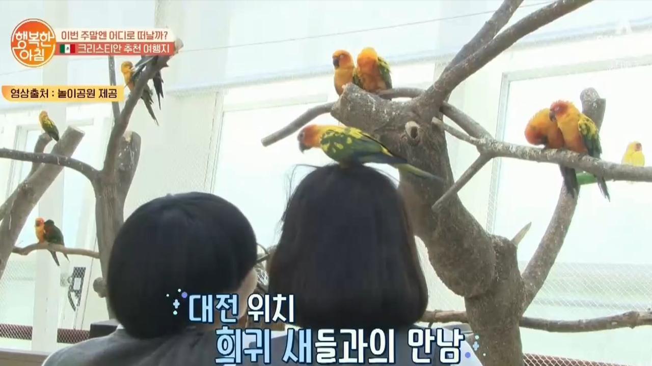 다양한 새들을 만날 수 있는 [대전 유원지] 아이들에게 인기만점♡ 이미지