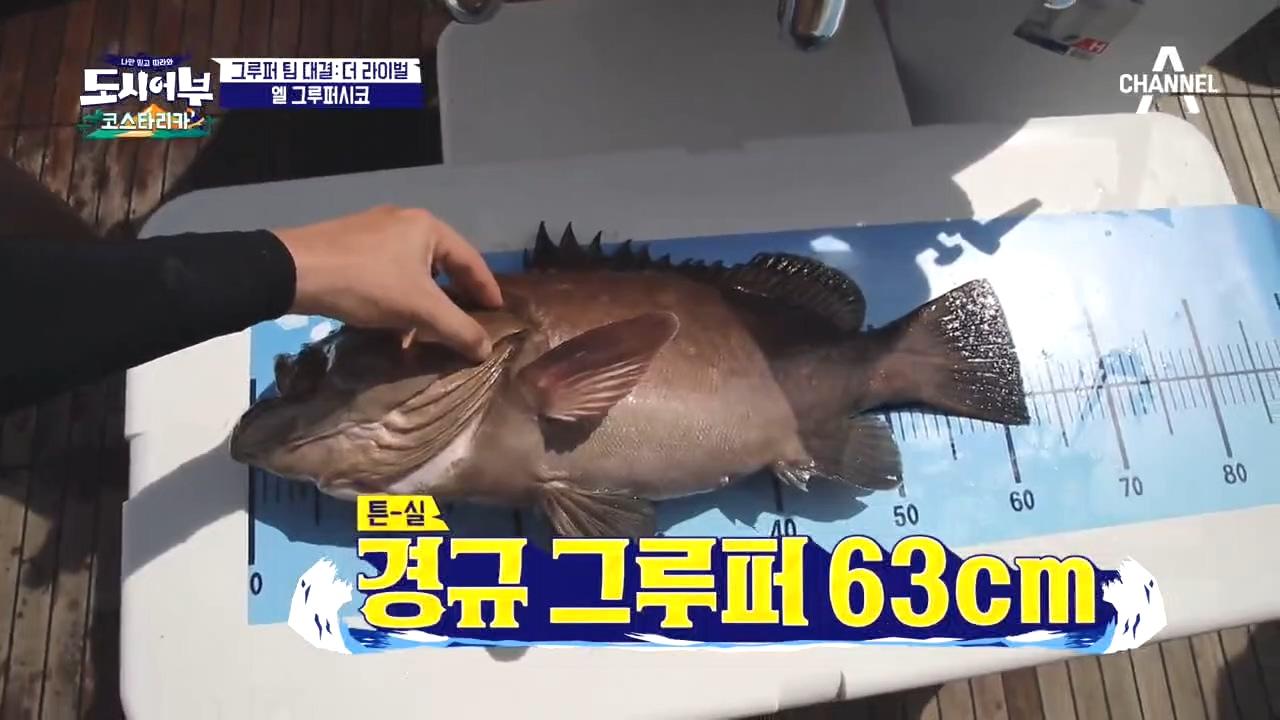 ♥HOT장면♥ 낚시 6시간 째 경규에게 천금같이 찾아온 63cm 그루퍼ㅠㅠ 이미지