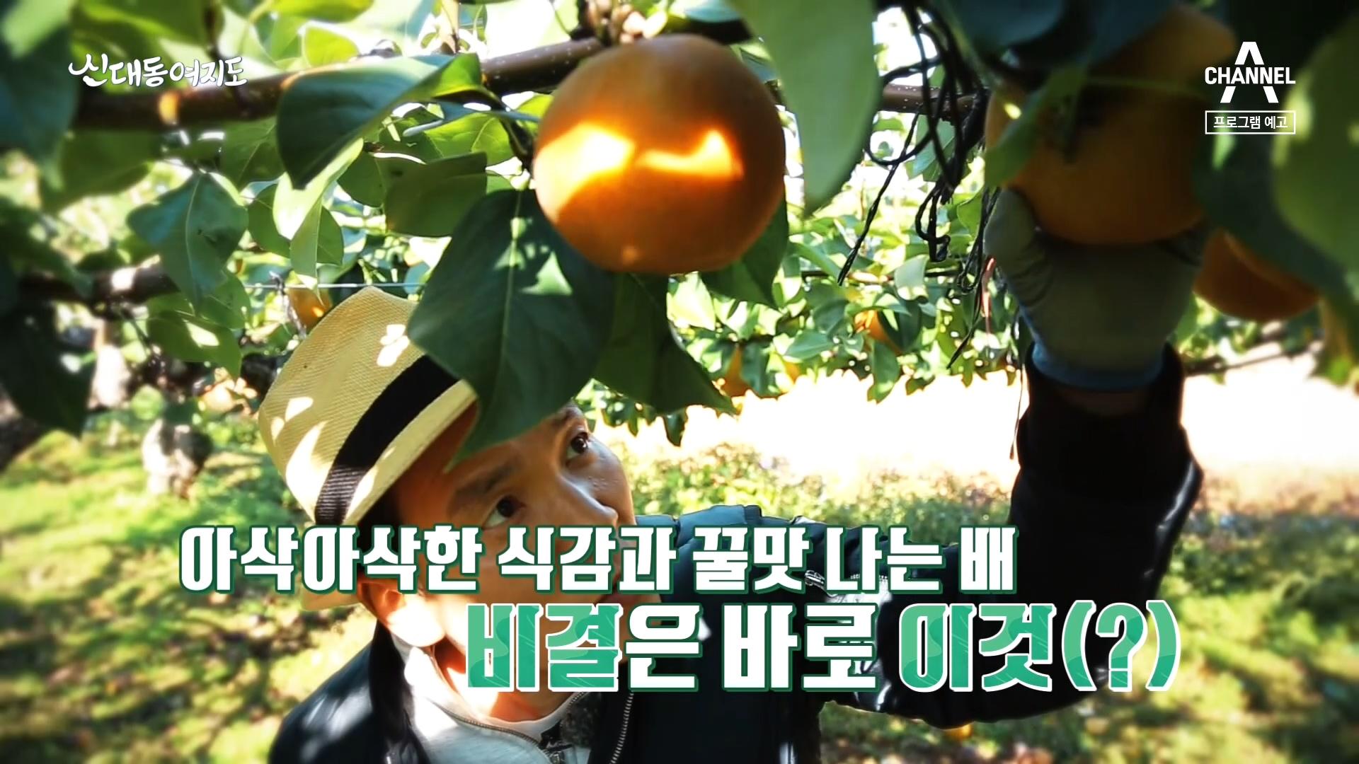 [예고] 가을의 맛