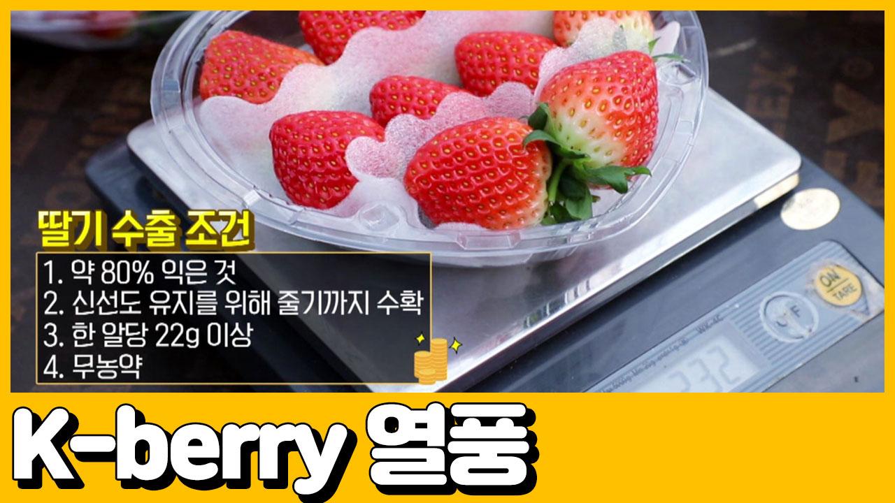 [선공개] (요건 몰랐지?) K-pop은 알겠는데 K-berry는 뭐야? 이미지