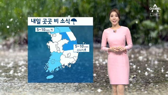 [날씨]내일 전국 곳곳 '비'…오전 '짙은 안개' 주의