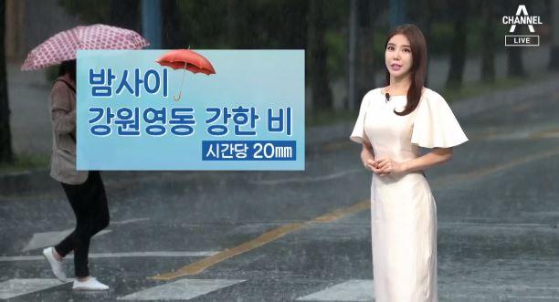 [날씨]밤사이 강원영동 강한 비…내일 오후까지 전국 장맛비