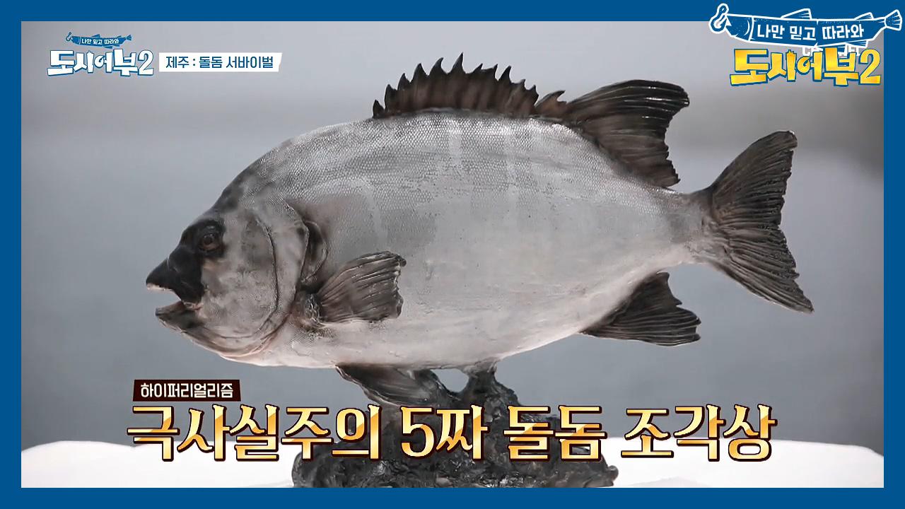 돌돔을 못 잡는 자, ★야밤에 한치 100마리★를 잡아라! (feat.예술적인 1등 상품) 이미지