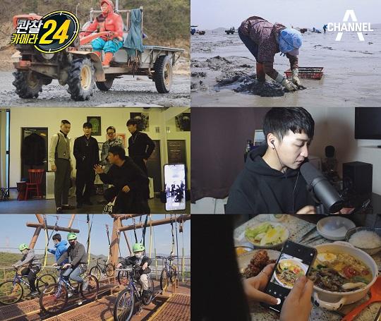 '관찰카메라 24' 화제의 '머드맥스', 태안 바지락잡이 현장에서 만난 장관