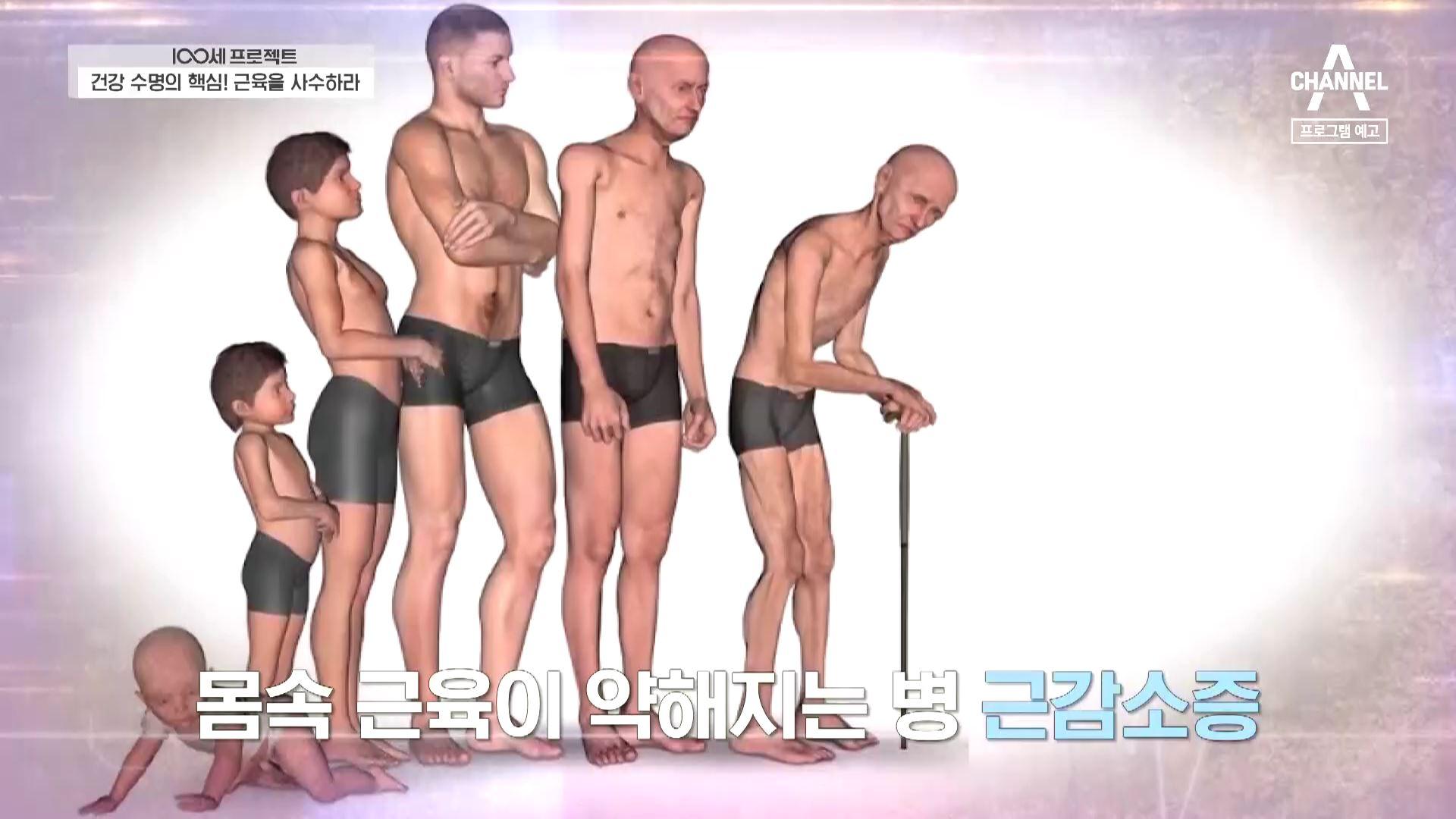 [예고] 100세까지 건강하게 근육을 지키는 비법! 이미지