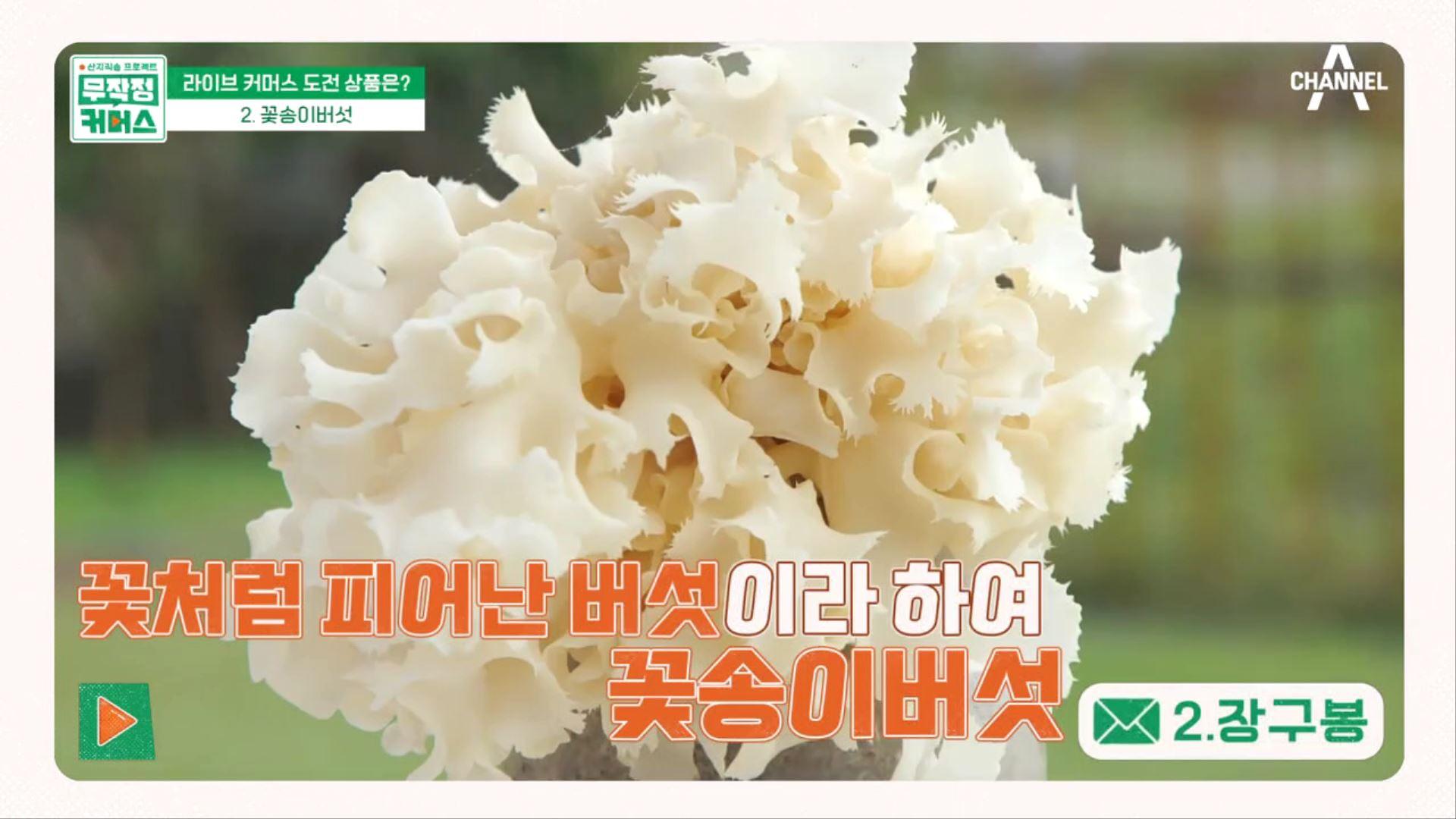 꽃배달 왔습니다♥ 꽃처럼 예쁘지만 효능까지 엑셀런트한 꽃송이버섯! 이미지