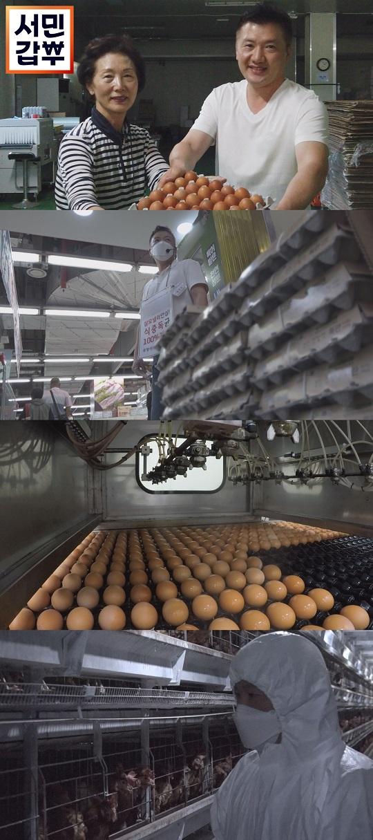 '서민갑부' 달걀로 120억 원을 깬 사나이…12배 높은 매출을 일궈낸 비법