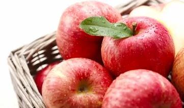 빨리 시들게 하는 사과…왜? 이미지