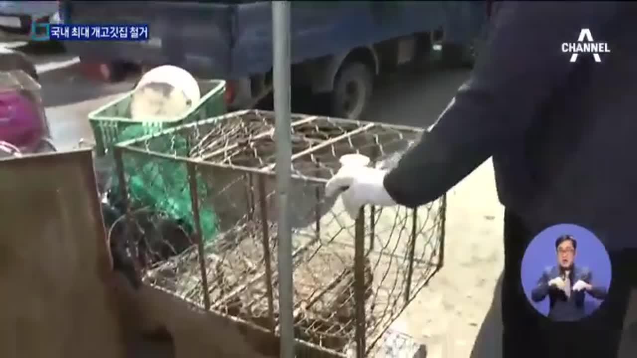 [현장 속으로]'50년 역사' 개고깃집 철거작전