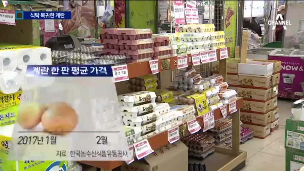 AI 진정세…한 판에 6천 원대 계란 등장