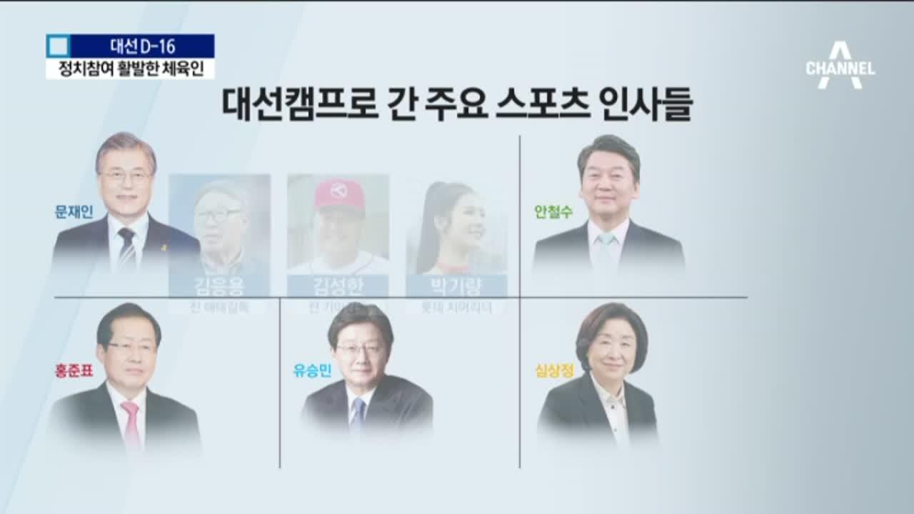 '최순실 게이트' 영향…스포츠계 정치 참여 활발