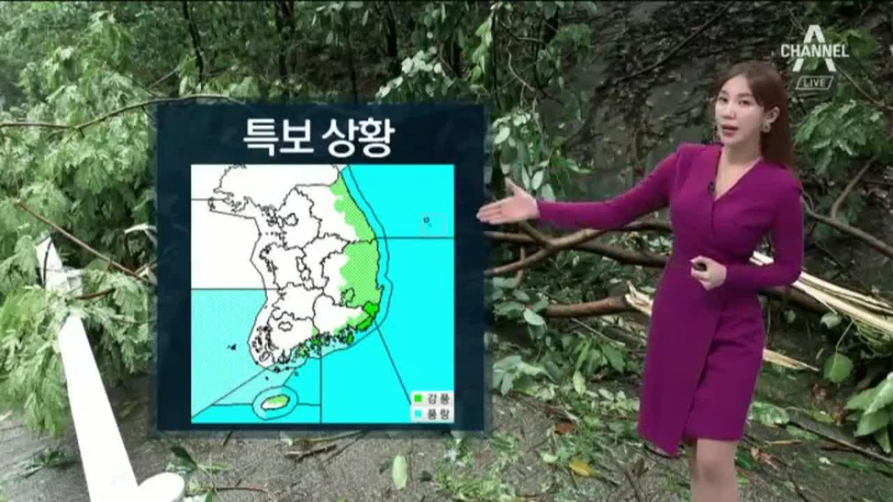 [날씨]태풍 '란' 북상 중…동해안 새벽까지 비
