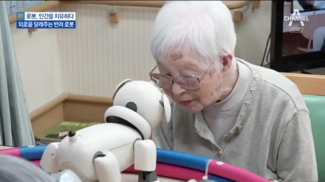 [로봇, 인간을 치유하다]'벗이 된 반려로봇'