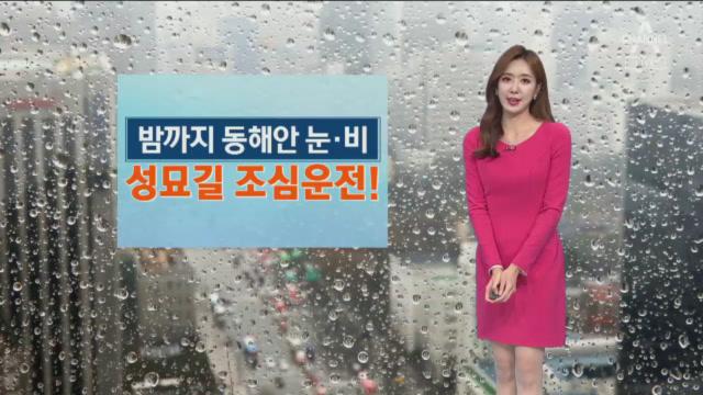 [날씨]밤까지 동해안 눈·비…설날 미세먼지 '보통'