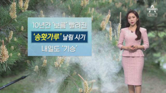 [날씨]내일 비 내리며 기온 뚝…송홧가루 기승