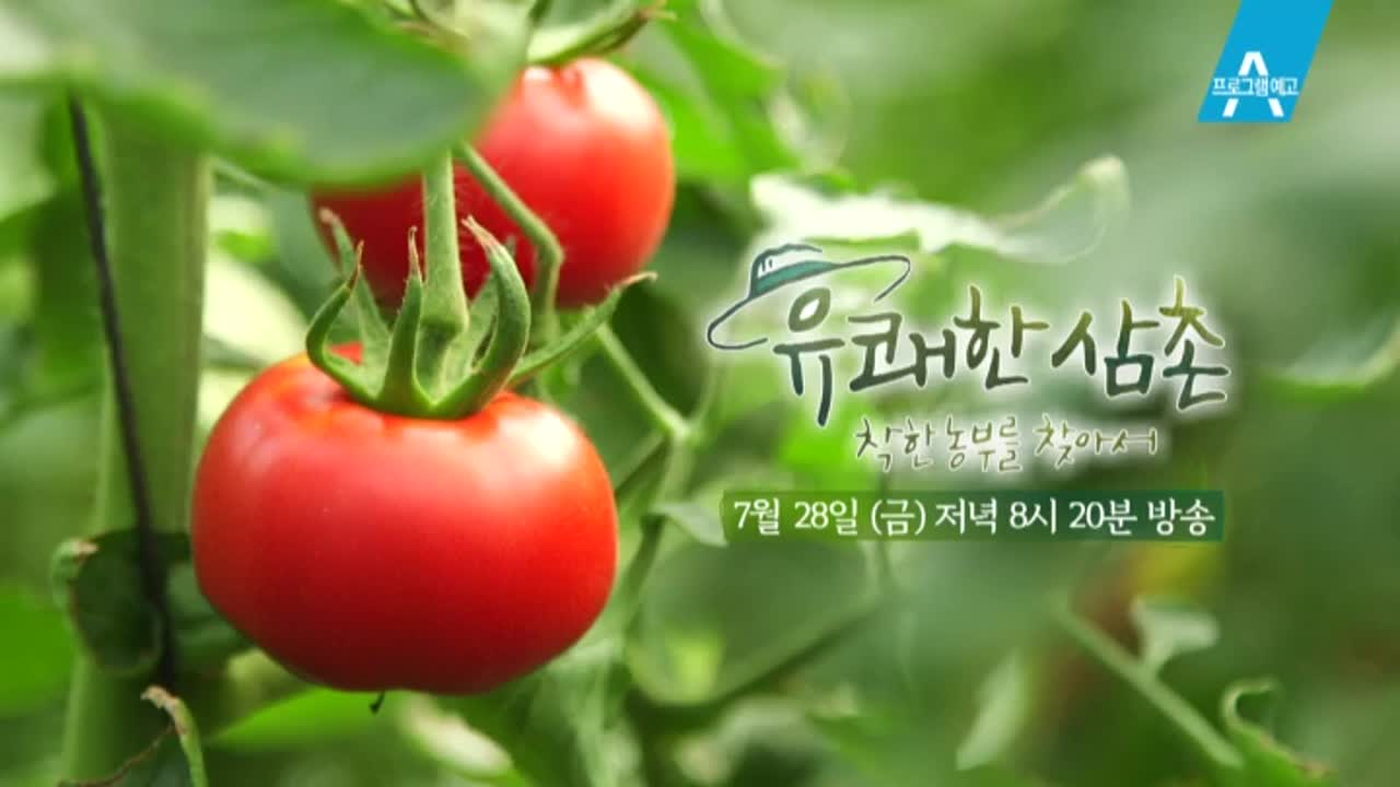 [예고] 새내기 농부의 남다른 철학! 착한 토마토 농부 김인성 이미지