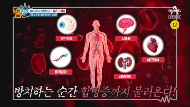 [예고] 젊어서 더 위험하다! 심뇌혈관질환 부르는 고혈압 이미지