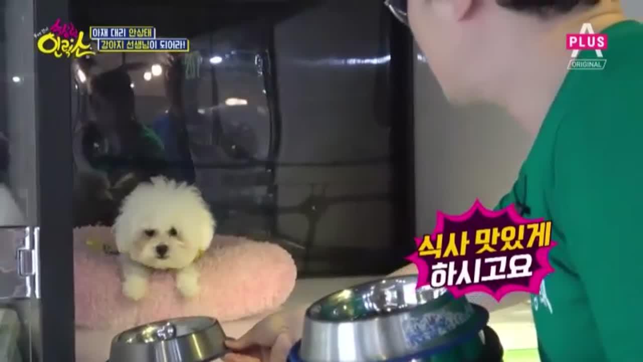 강아지 선생님이 된 안상태, 개사료를 먹다!(ㅋㅋㅋ) 이미지