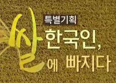 특별기획 한국인 쌀에 빠지다 바로가기