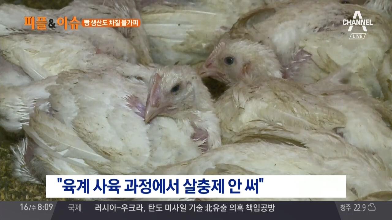 김현욱의 굿모닝 221회