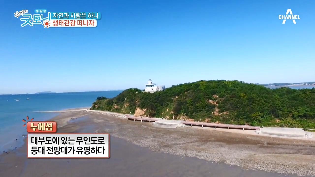 김현욱의 굿모닝 248회