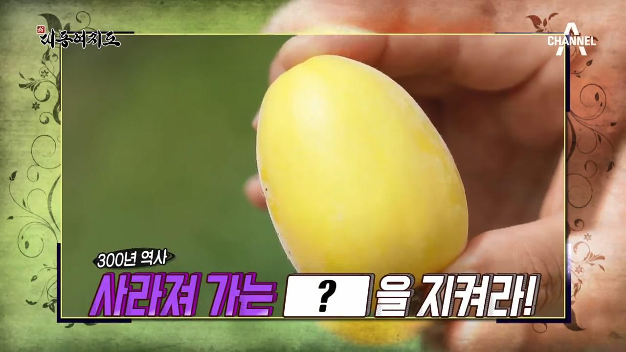 신대동여지도 254회