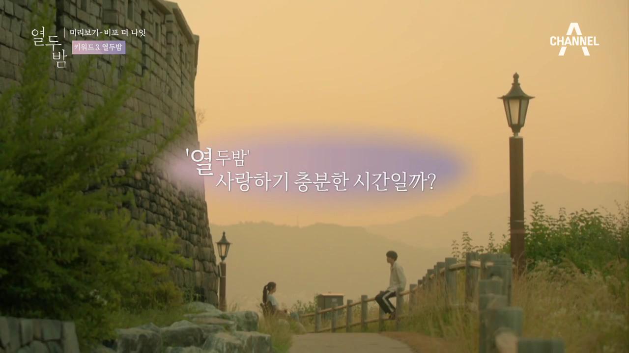 열두밤 미리보기 '비포 더 나잇'