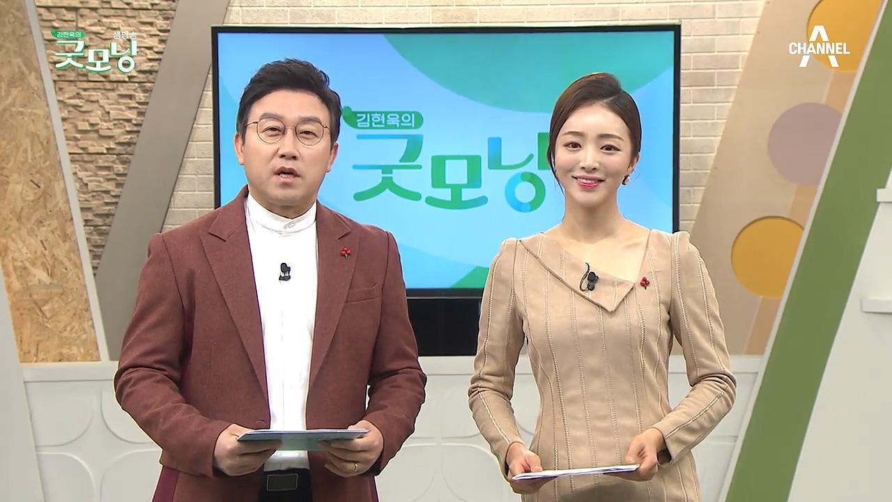 김현욱의 굿모닝 564회