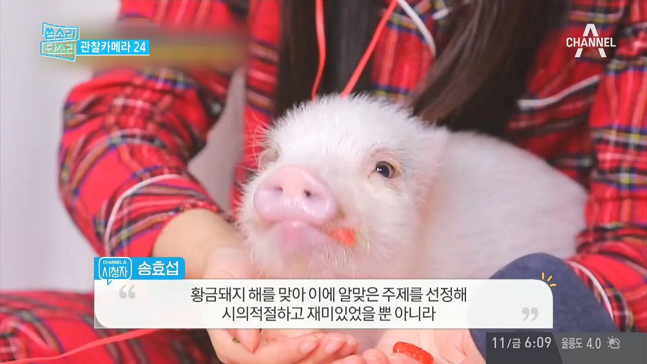 '채널A 시청자 마당' 371회