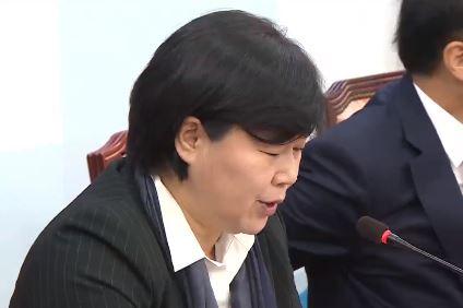 서영교·손혜원 악재에 속앓이…민주당 진상조사 나서