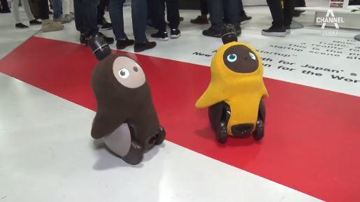 """[더넓은뉴스]""""저는 감정이 있어요""""…교감 로봇의 현실화"""