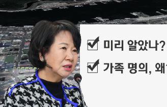 """'투기의혹' 손혜원 """"문화유산 보호 차원 매입 권유"""""""