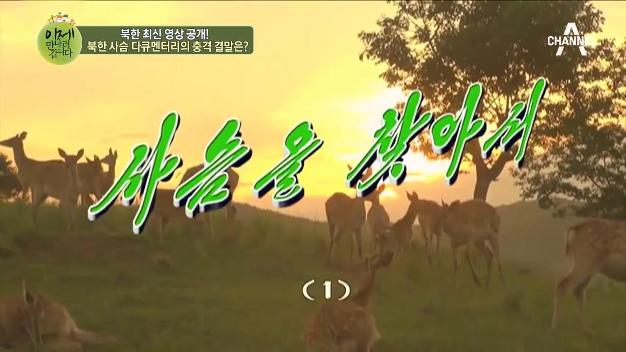 앗! 북한에 이런 일이? 북한 사슴 다큐멘터리의 충격 ....
