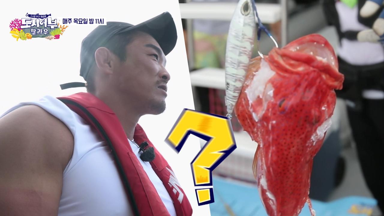 상어 복수혈전! 추성훈과 상어의 힘대결_도시어부 74회....