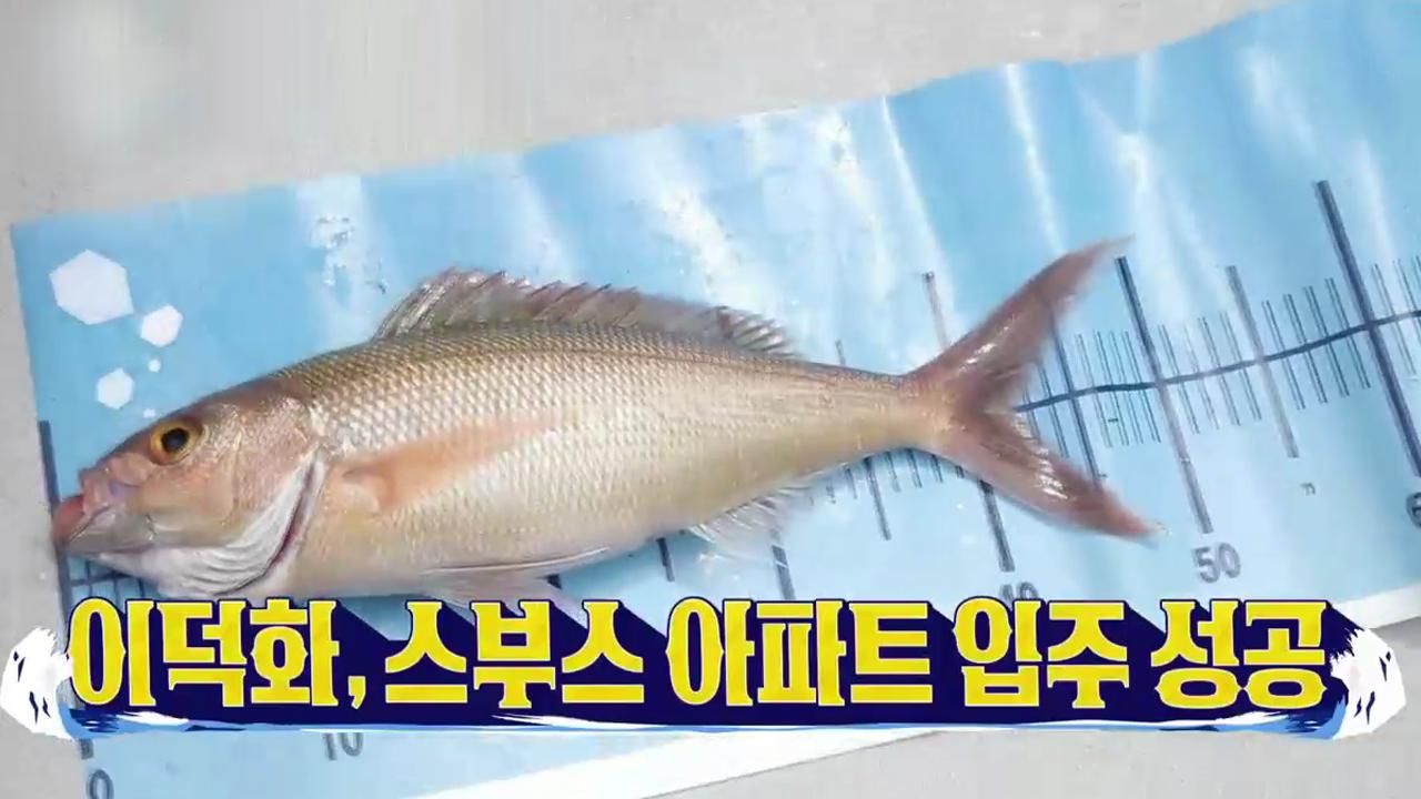 (축) 이덕화 첫 물고기 개시! '팔라우 스부스(핑크 ....