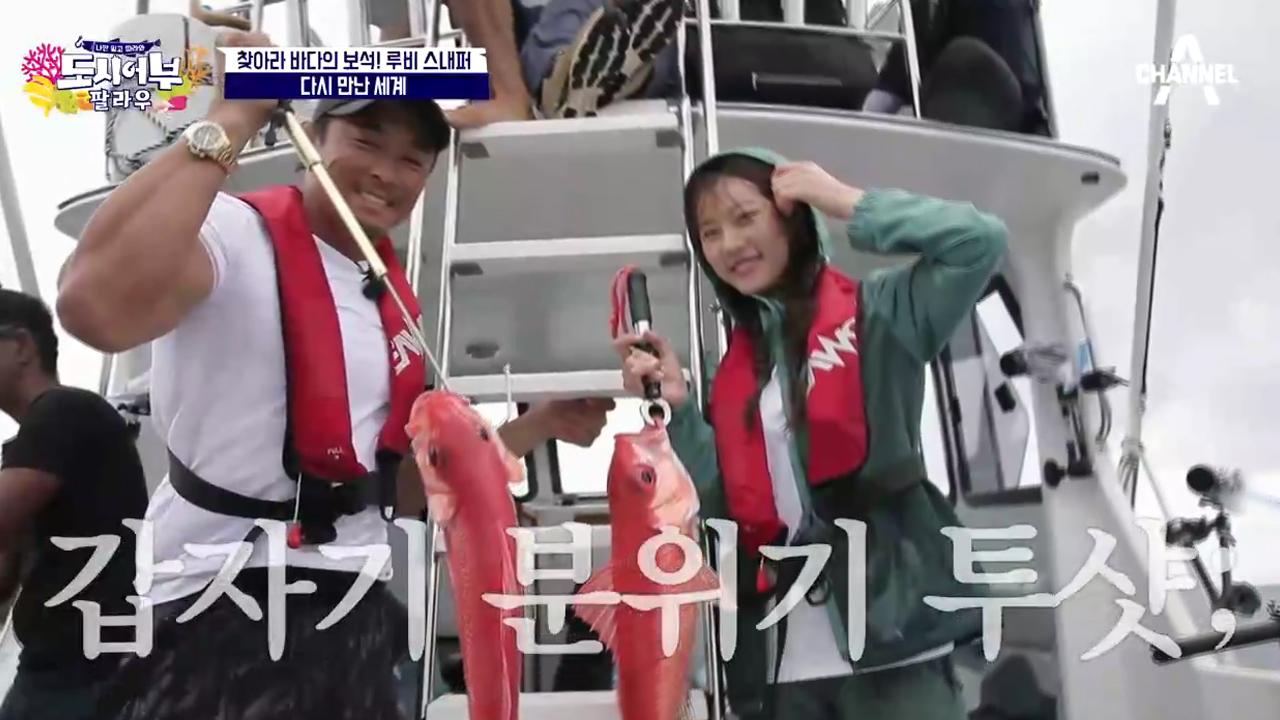 (경) 2연속 루비님 HIT (축) 추블리에 이어 김새....