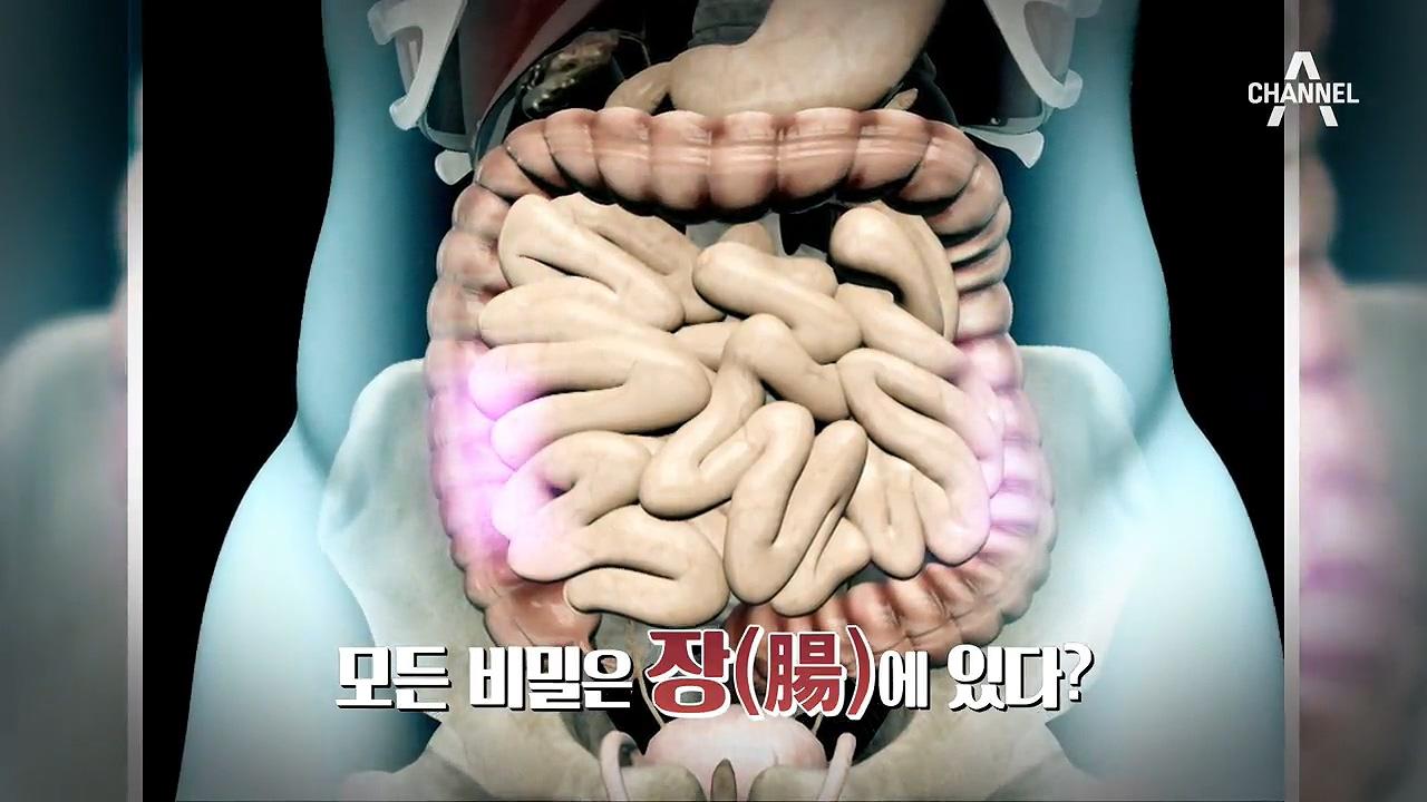 [특별기획] 살 찌는 당신, 장 누수를 막아라!