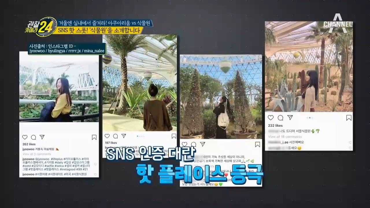 좋아요♥를 부르는 SNS 핫스폿, 서울식물원!