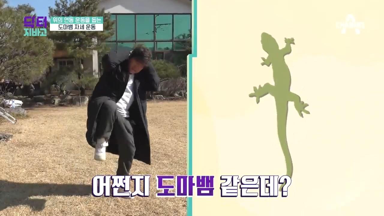 이계인의 '위 건강 : 도마뱀 자세 운동'! (feat....
