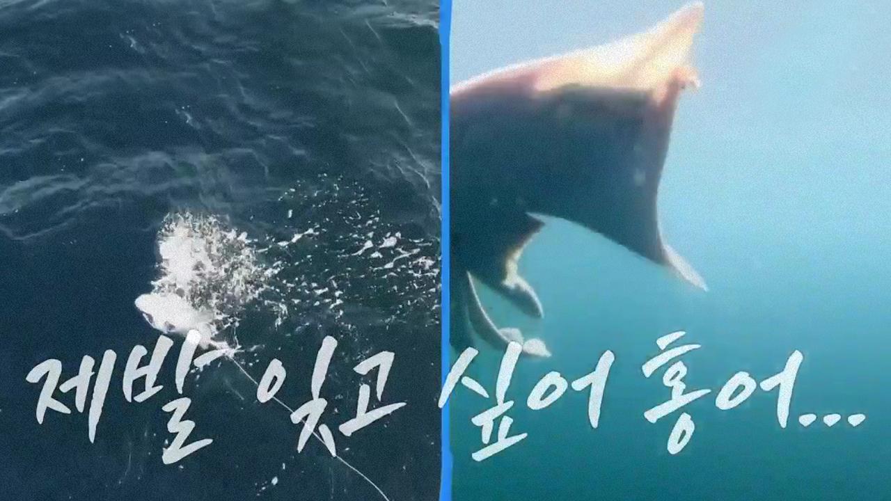 도시어부 신문물 소개 '수중 드론' 쇼 타임♡ (fea....